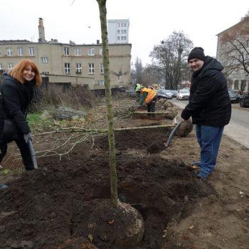 Ewa Woźna (Z-ca Przew. Zarządu) oraz Krzysztof Koprowski (Przew. Zarządu) podczas sadzenia drzew przy ul. Czarnieckiego